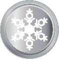 1 Snowflake Silver