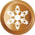 1 Snowflake Bronze