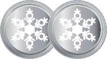2 Snowflakes Silver