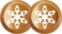 2 Flocons Bronze