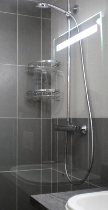 sabot-de-venus-5p10-salle-de-bain-5-351898
